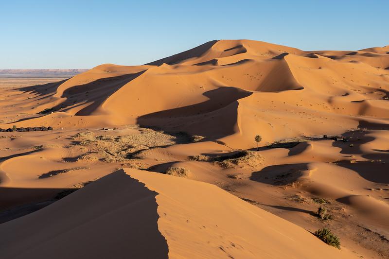 Dunes in the Sahara Desert