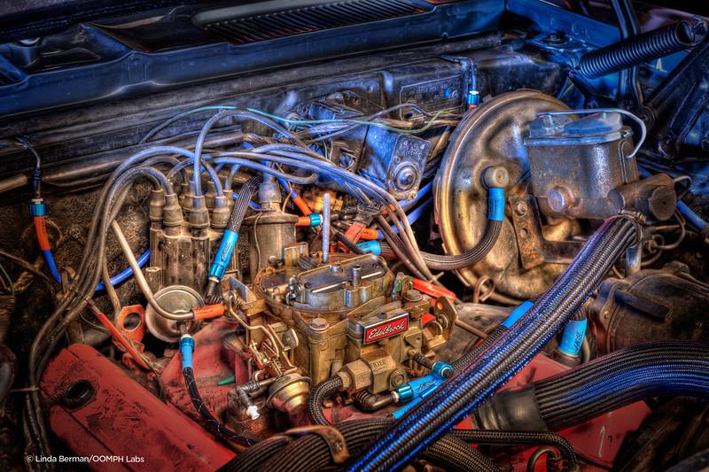 Hose Candy hose candy under hood B crop 7788 copy 7.5x5.jpg
