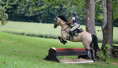 Dan Hobyn Stables 50th Year Fall Horse Trial & Celebration