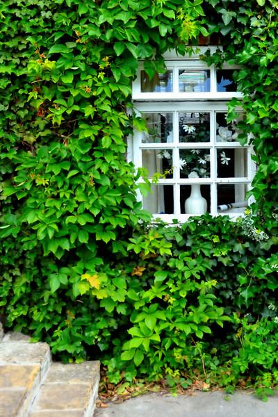Aldbourne Window~7289-1.