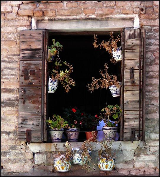 2008-08-Venezia-1251.jpg