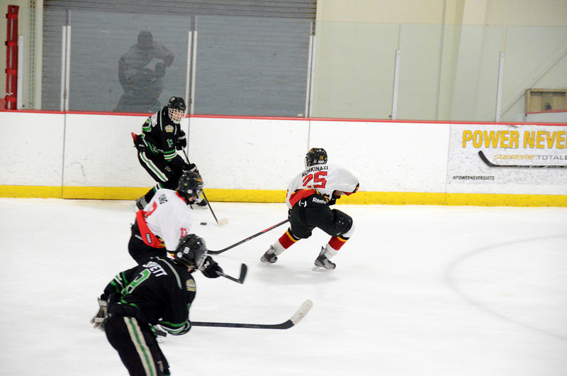 140111 Flames Hockey-061.JPG
