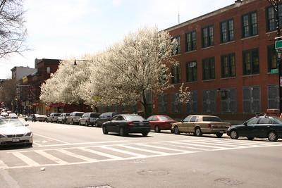 The Park Slope Parents Spring Fling