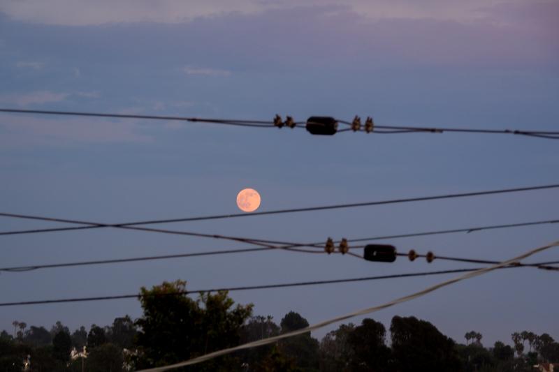 July  8 - Moon on a wire.jpg