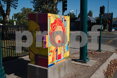 Art In Public Places - Traffic Control Boxes