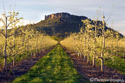 Southern Oregon Scenics