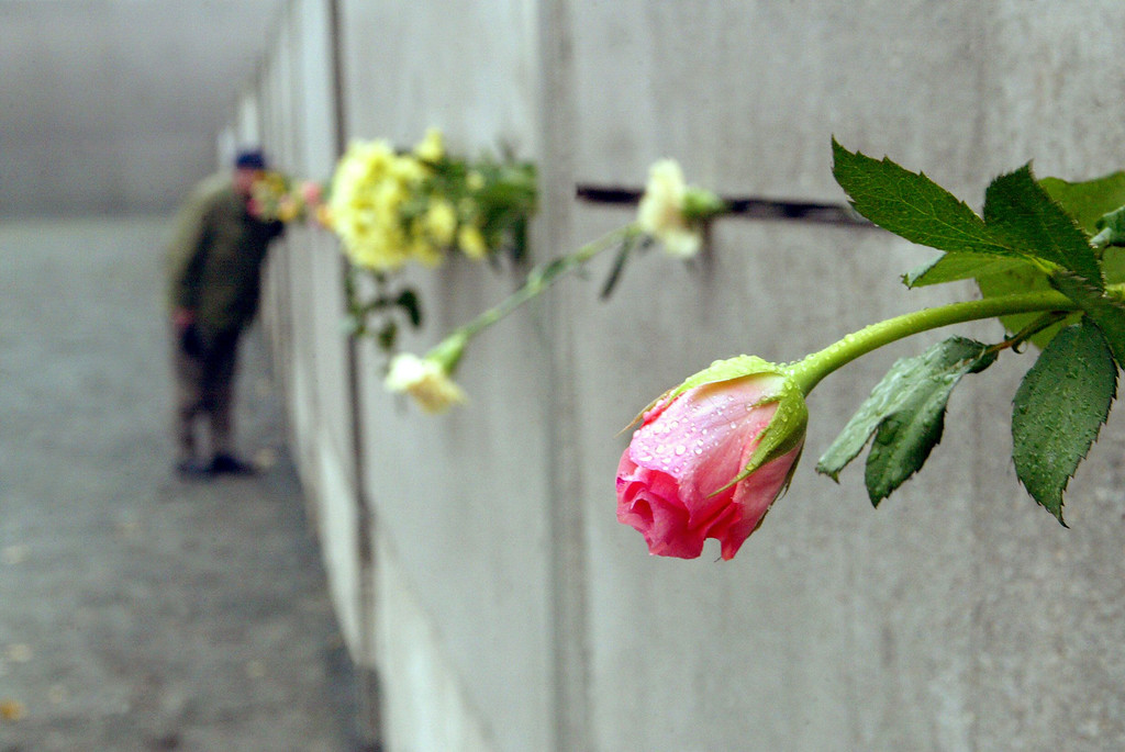 . A visitor lays flowers 09 November 2004 at the Berlin Wall memorial at the Bernauer Strasse to commemorate the 15th anniversary of the fall of the wall. The peaceful revolution against the communist regime of the former German Democratic Republic (GDR) culminated in the destruction of the despised Wall that cleaved Berlin and Germany in two for 28 years.        (Photo credit MICHAEL KAPPELER/AFP/Getty Images)