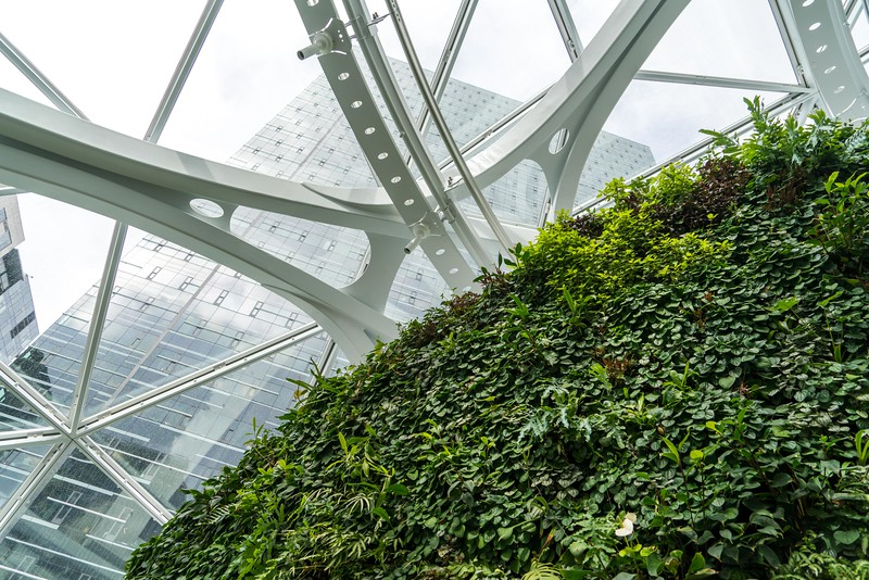 Pratt_Amazon Spheres_034.jpg