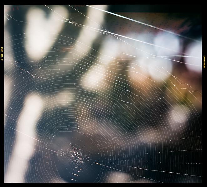 Tucson_17-793-Edit-2.jpg