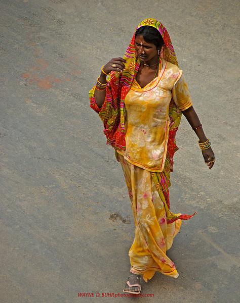 INDIA2010-0208A-45A.jpg