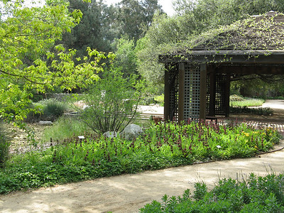 Rancho Santa Ana Botanic Gardens