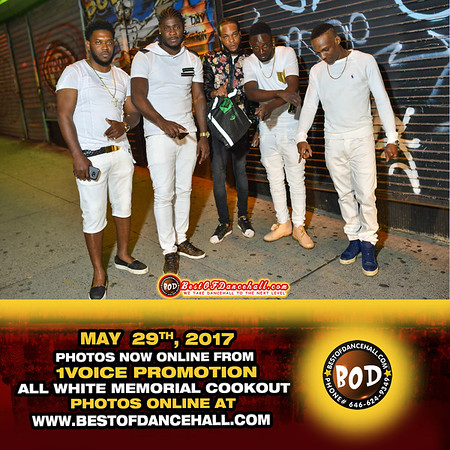5-29-2017-BRONX-1Voice Promotion All White Memorial BBQ