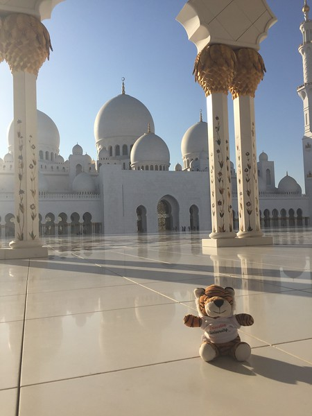 PJ the Tiger at the Seikh Zayed Mosque in Abu Dhabi - Bridget St. Clair