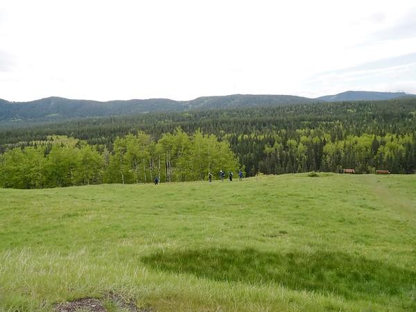 Foran Grade Ridge - Sheep River Trails  June 20 2020