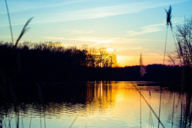 Lums Pond 03 2016-3564-HDR-2.jpg
