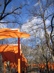 Christo Wraps Central Park 2005