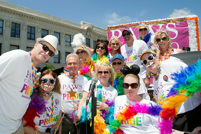 2014 PAWS Chicago Pride