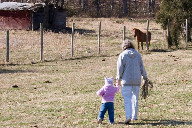 farm0306_08.jpg