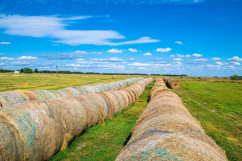 Horn Ranch-1240.jpg