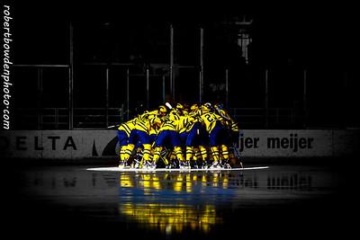 Michigan vs Minnesota 15 Mar 14