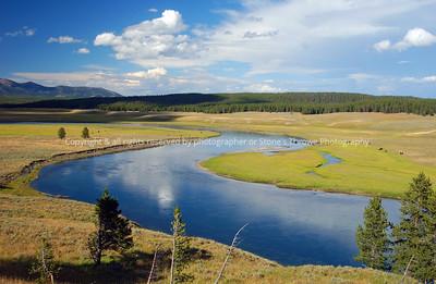 019-yellowstone_river_buffalo-yellowstone_park-09aug05-7412