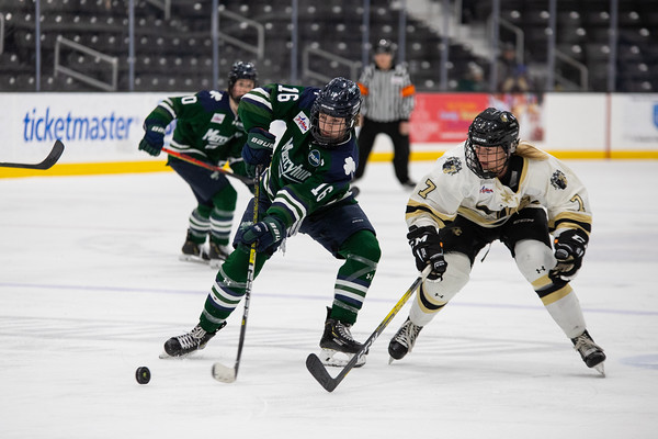 Women's Ice Hockey: Lindenwood vs Mercyhurst