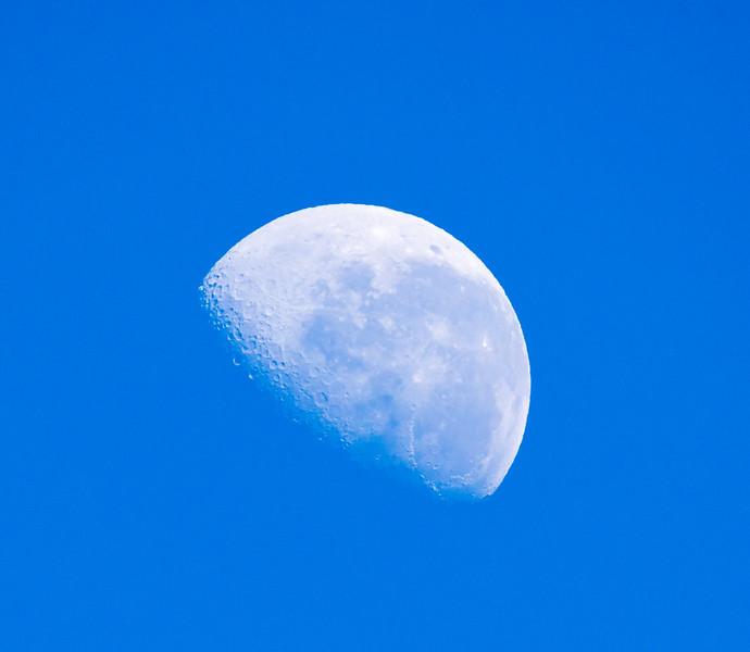 IMAGE: http://mattypix.smugmug.com/photos/i-nQHwtXD/0/L/i-nQHwtXD-L.jpg