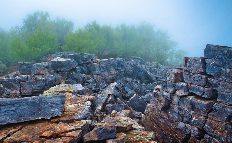 Boulders in fog on Blackrock Summit, in Shenandoah National Park, Virginia.