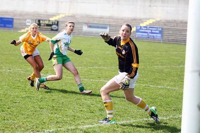 Ladies Football Offaly V Antrim