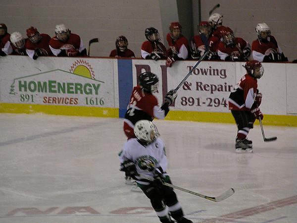Hockey 2003-2004