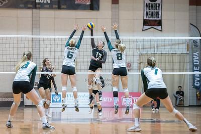 Bison Women's Volleyball vs Saskatchewan Huskies De 2, 2017