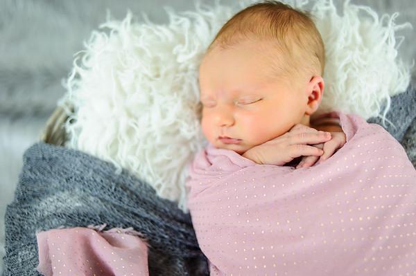 Marley Mihin Newborn