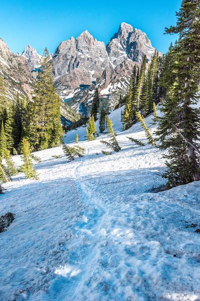 Teton Snow Trail