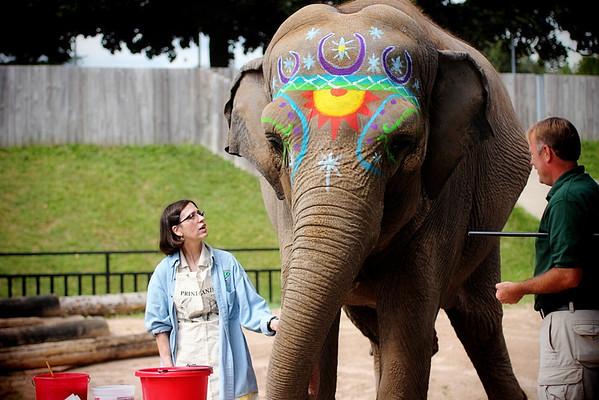 Rosamond Gifford Zoo Elephant Extravaganza