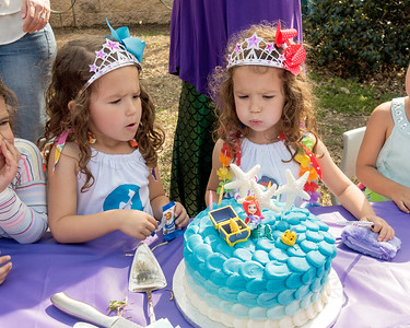 2017 Twins Birthday Party