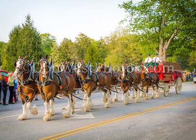 Week of the Horse Parade 2015