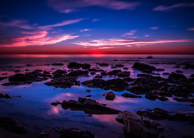 Coastal_Tribolet-101.jpg