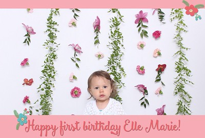Elle's First Birthday