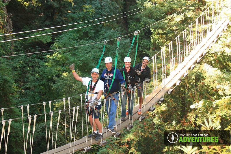redwood_bridge_1473445861289.jpg