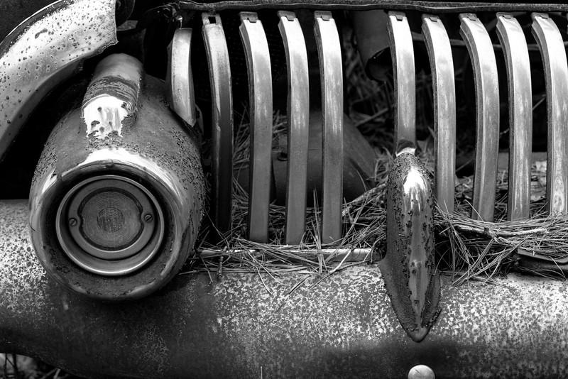 Junk Yard Dawgs_0781
