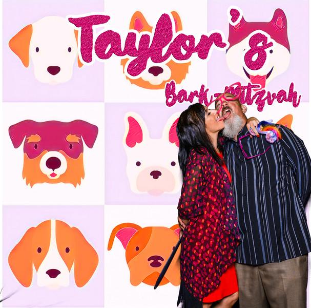 Taylors pawmitzvah-20839.jpg