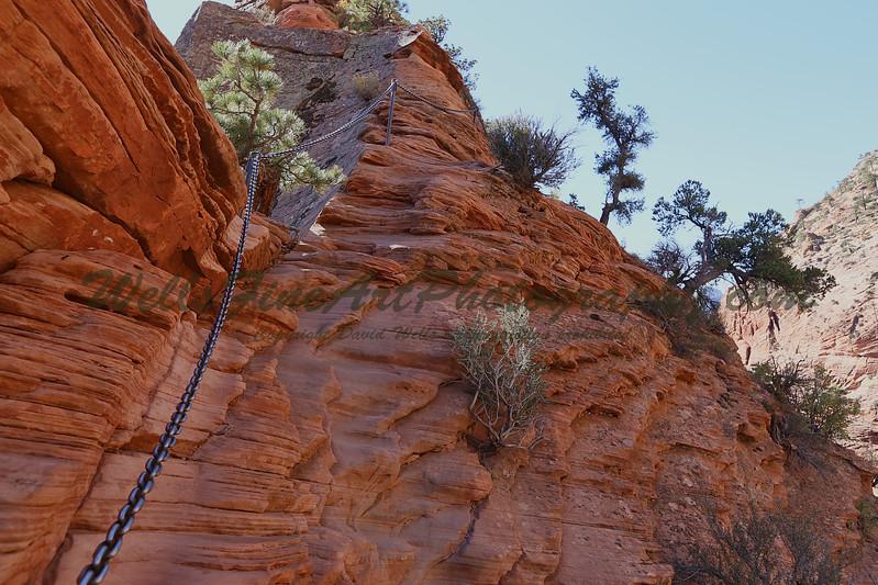 Chain trail 3.jpg