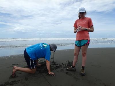 Costa Rica Wildlife Ecology Program 2017