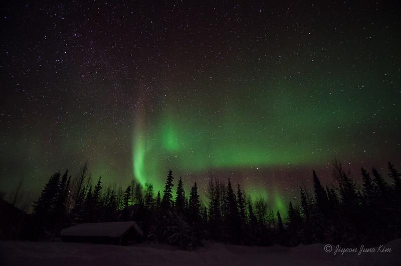 USA-Alaska-Wiseman-Aurora-2905.jpg