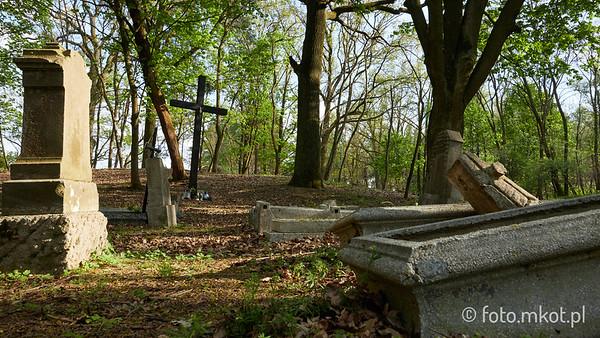 Cmentarz ewangelicko-mennonicki w Silnie