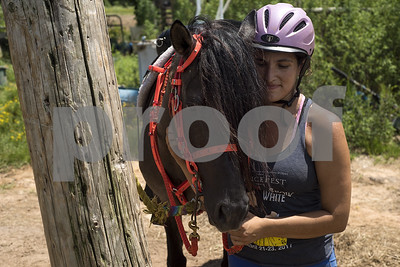 karma-farms-helps-give-wild-horse-a-second-chance