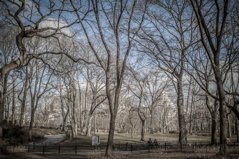 Central Park, New York City, By Alex Kaplan www.AlexKaplanPhoto..com