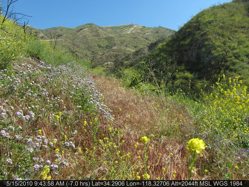 20100515006-Doc Larson Trail Recon.JPG