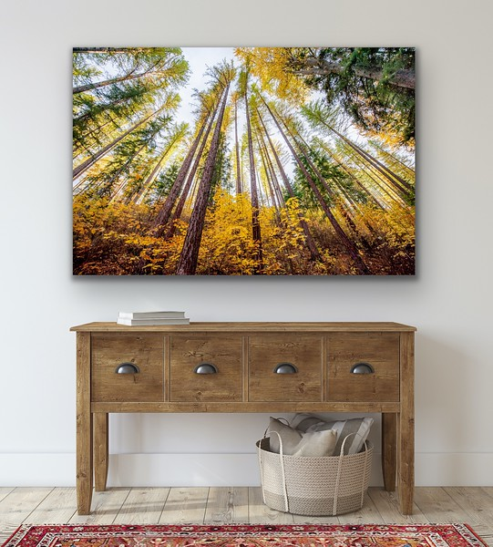 'Stand Tall' Canvas