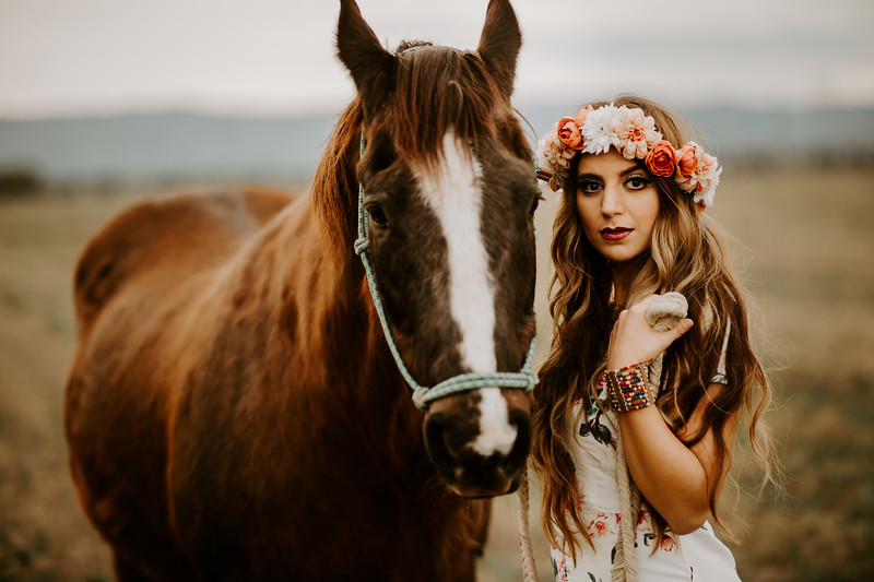 horsey-211.jpg